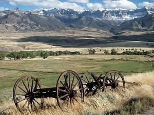 Wyoming Annual Report Filings